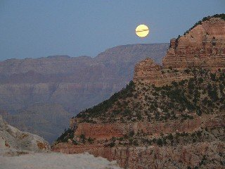 Could the Rutting Moon Stop You From Bagging That Big Buck?
