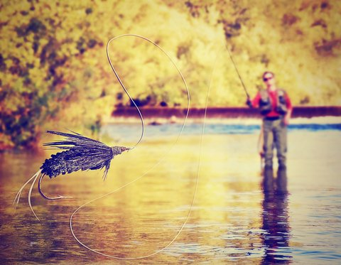 4 Fly Fishing Essentials You Can't Leave Behind