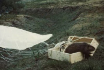 Rediscovered Film Reveals 1950s Beaver Airdrop