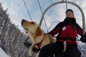 Avalanche Dogs Play Vital Role in Ski Resort Rescues