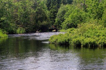 Superior National Forest As Exquisite As Name Implies