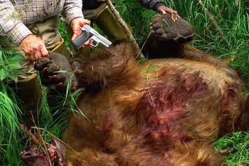 Alaskan Fishing Guide Kills Grizzly with 9 mm