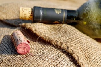 Canadian Man Fends Off Bear Attack with Wine Bottle