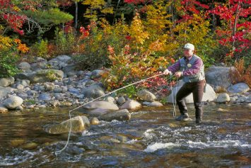 4 Must-Visit Rivers for Fall Fly Fishing