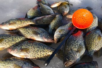 3 Tackle Tips for Catching Crappie Through the Ice