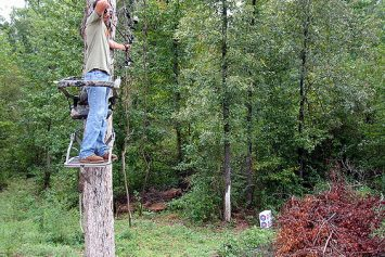 6 Tips for Postseason Tree Stand Maintenance