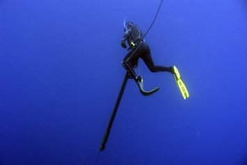 6 Things to Consider in Getting Started Spearfishing